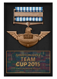 Team Cup 2015 Participation Award